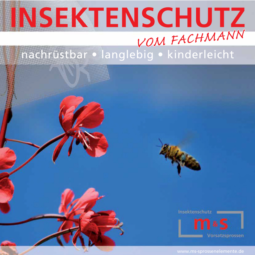 Insektenschutz Köln Beratung & Montage